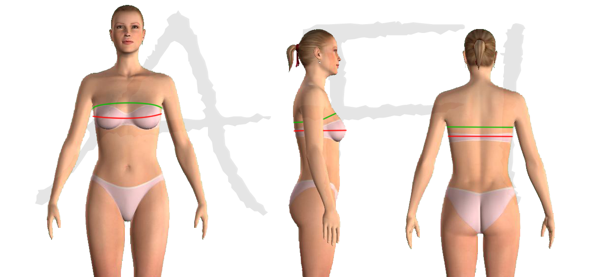 over bust measurement