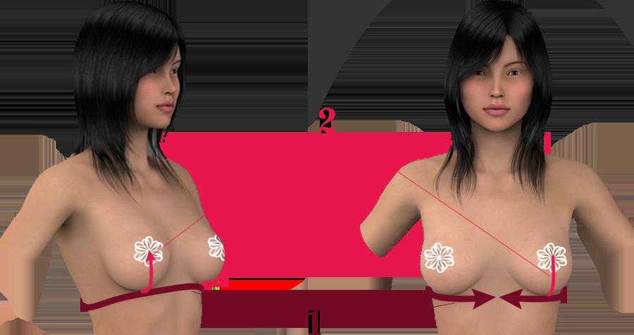 Afi Atelier Measurements for Bra size